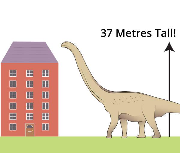 argentinosaurus-size